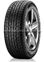 Apollo Alnac Winter 175/70 R13